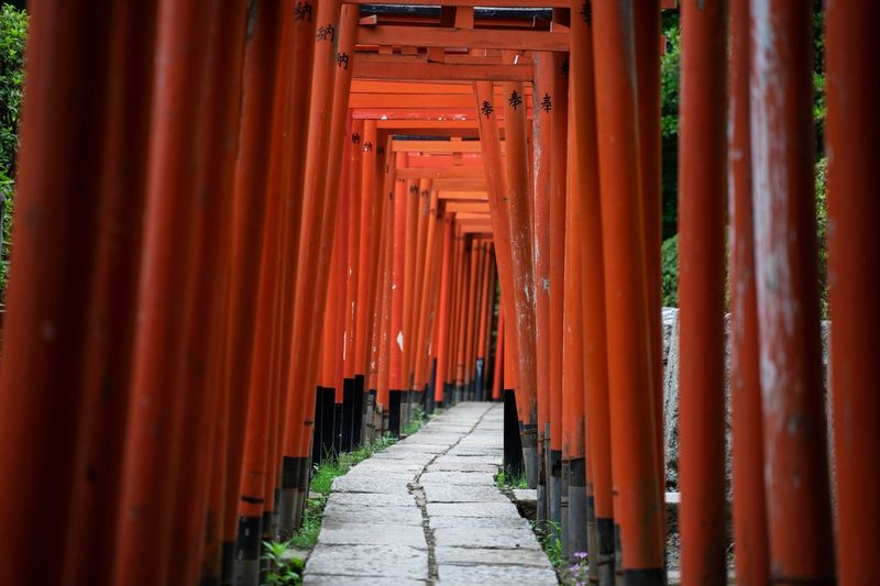 Torii Gate Trip Tokyo,Japan Tokyo The Way Forward Direction Architecture Built Structure Spirituality Belief Place Of Worship Religion Shrine In A Row Red Diminishing Perspective Building Travel Travel Destinations No People Architectural Column Outdoors Long The Architect - 2018 EyeEm Awards The Traveler - 2018 EyeEm Awards