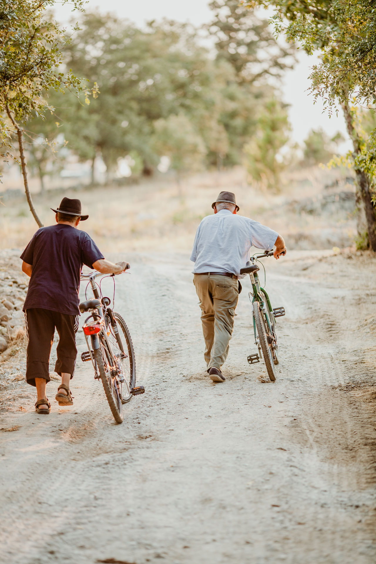 Rear view of men walking with bicycles on dirt road
