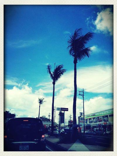 今日もいい天気だった。だけど風があったな~。