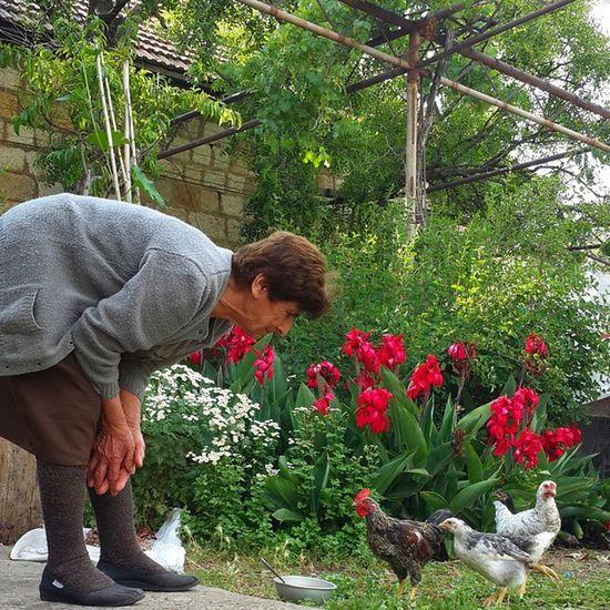 تعوا ...تعوا. ..تعوا صبك بك بك بك صباح الخير Bonjour /good morning Lebanon_hdr LiveLoveLebanon Livelovebeirut Lebanon_tourism Live_loving_lebanon Lebanon Loves_lebanon Alalamiya This_is_lebanon Super_lebanon Ptk_nature Ig_lebanon Super_france Insta_lebanon Instaamici Insta_worldz Ptk_nature Jj_indetail