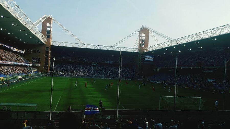 Stadium Good Day Fun Times Forza Doria