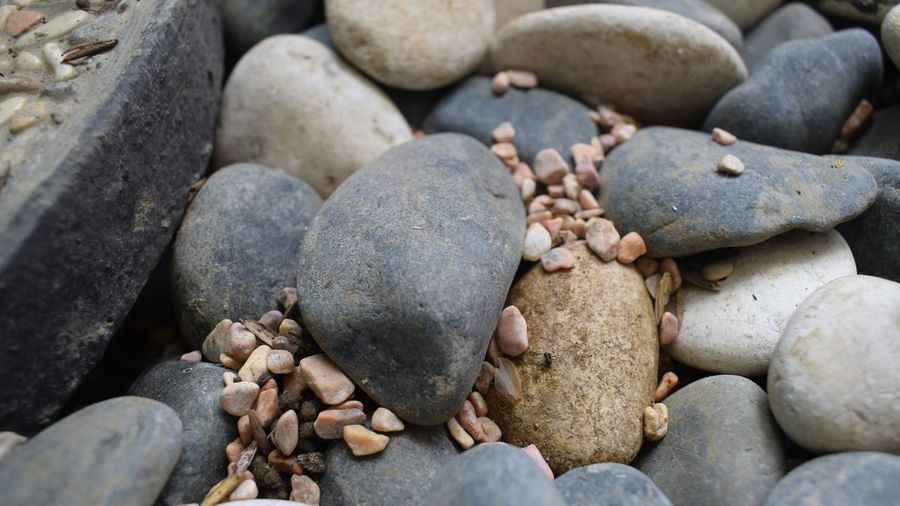 these stones rock! Tumblr EyeEm Gallery Close-up EyeEmBestPics EyeEm Best Shots EyeEm Selects Summer Nature Photography EyeEm Best Shots - Nature EyeEm Nature Lover Leafs Photography Beach Photography Beach Stone Pebble Beach Nature Photography Nature Wallpaper EyeEmNewHere Beach Nature Pebble No People Sand Sea Full Frame