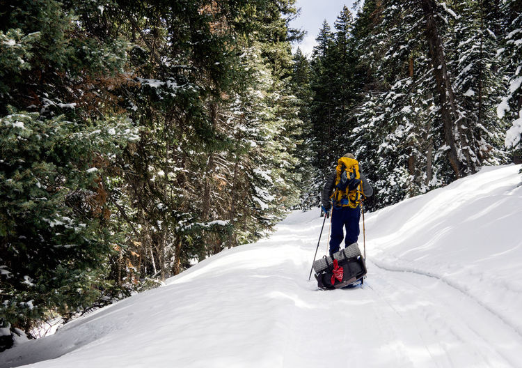 A backcountry skier drags a sled through a forest of snow covered trees. Adventure Backcountry Beauty In Nature Cold Temperature La Salle Landscape Moabit Mountain Mountain View Mountains Season  Skiing Sled Snow Tranquil Scene Tranquility Unrecognizable Person Weather