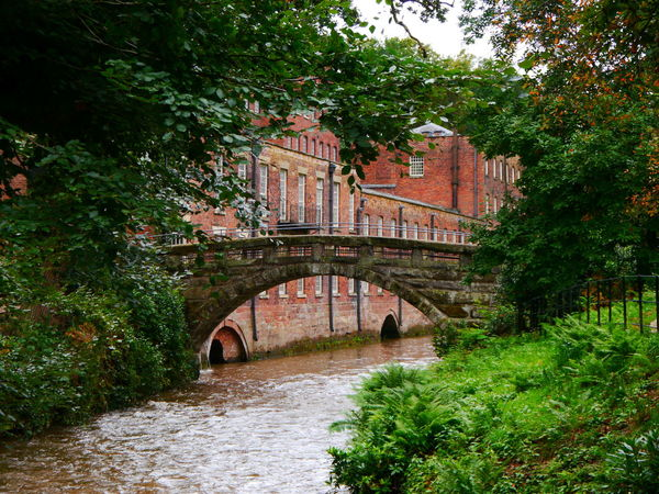 Quarry Bank Mill Bridge Built Structure Architecture Bridge - Man Made Structure Connection Arch Plant Tree Water River Arch Bridge Nature No People Transportation Growth Building Exterior Outdoors Day Forest Arched