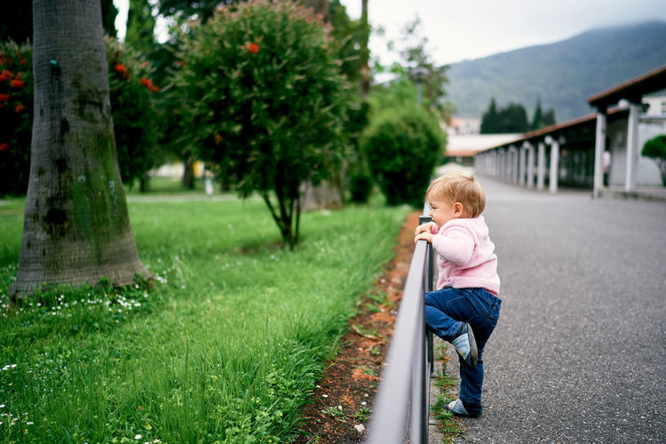 Rear view of boy on grass against trees