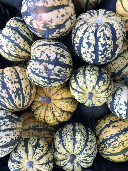Abundance Backgrounds Food For Sale Freshness Healthy Eating Heap Large Group Of Objects Market Multi Coloured No People Squash Squash - Vegetable Stack Whole