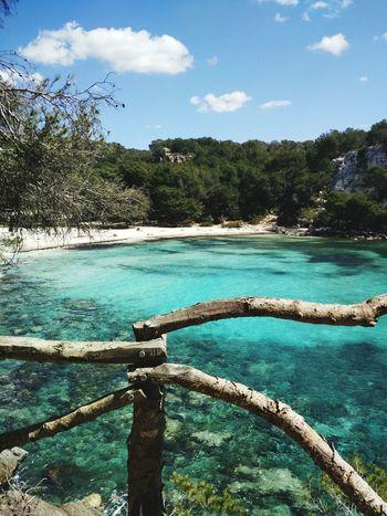 Sea Beauty In Nature No People Scenics Beach Water Tree Nature Day Sky Menorca Cala Macarella