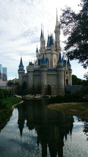 L O V E Amazing Disney World Cinderella