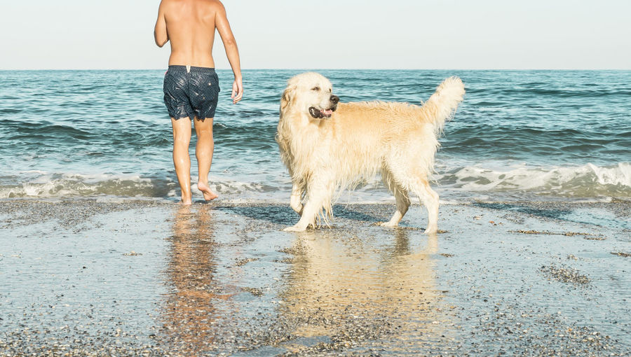 Beach reserved for dogs. Where happiness takes place. Animal Themes Beach Beach Photography Day Dog Domestic Animals Friendship Golden Retriever Horizon Over Water Leisure Activity Low Section Nature One Animal Outdoors People Pets Retriever Sea Sky Sunny Day Water Young Adult Sommergefühle
