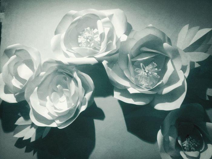 home decoration.handmade.paper flowers. 59662 171640 85632 224249 flowers