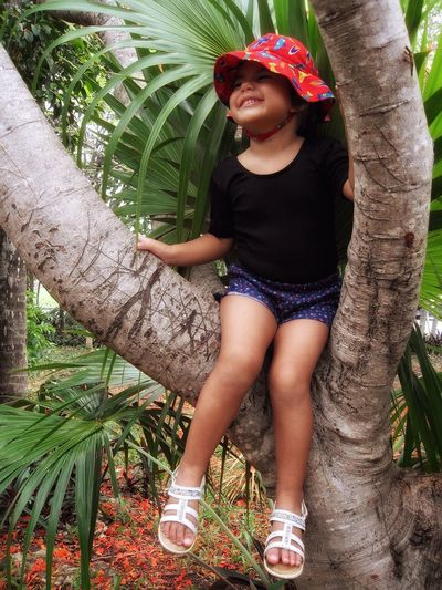 Girl smiling on a tree... Girl Cap Live For The Story Summer Smiling Face Live For The Story. One Person Tree Lifestyles Tree Trunk Leisure Activity Casual Clothing Childhood Elementary Age Outdoors Growth Front View Day Happiness Standing Full Length Smiling Boys Nature Young Adult