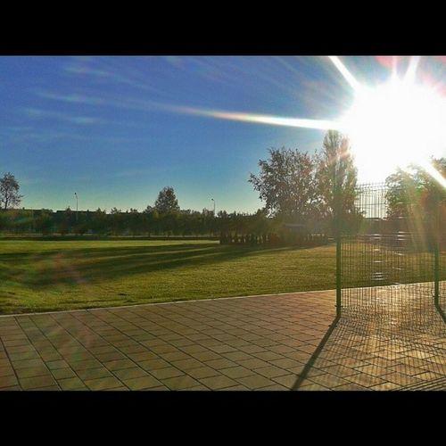Sunce! Ilovenovisad Novisad Novembar