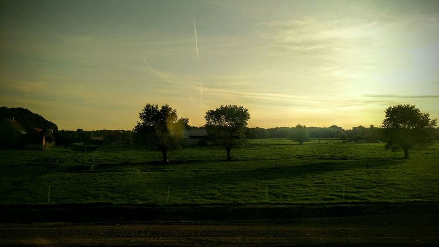 View from a train I Train Commuting Low Countries