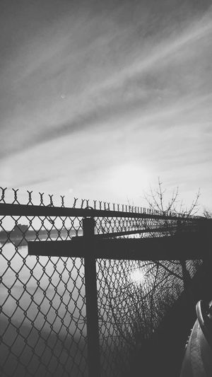 Detroit River Fence Sunset Black And White Autoshow 2017 Outdoors Busy City