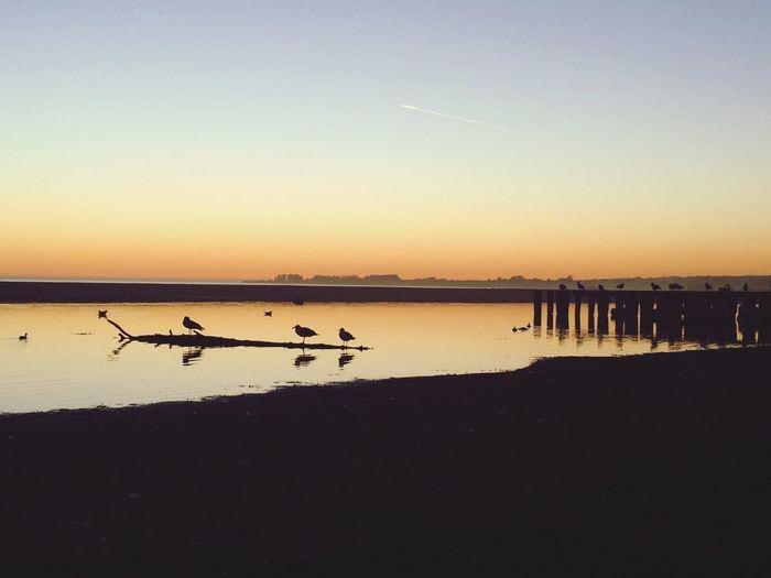 Being A Beach Bum Rio Del Mar California