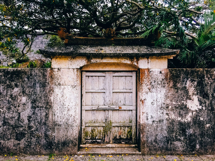 Closed door on abandoned surrounding wall against trees