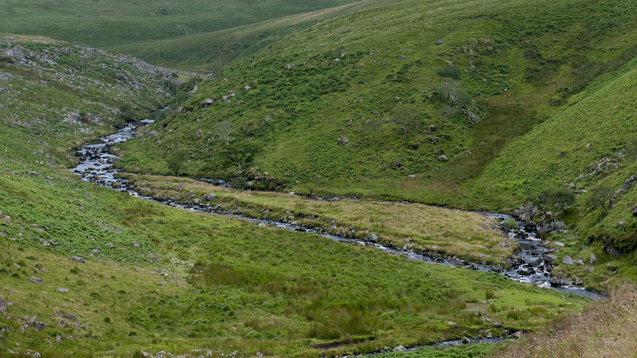 Dartmoor Devon UK Tavy Cleave Beauty In Nature Dartmoor National Park Day Grass Green Color Landscape Mountain Nature No People Outdoors Scenics Sky Water