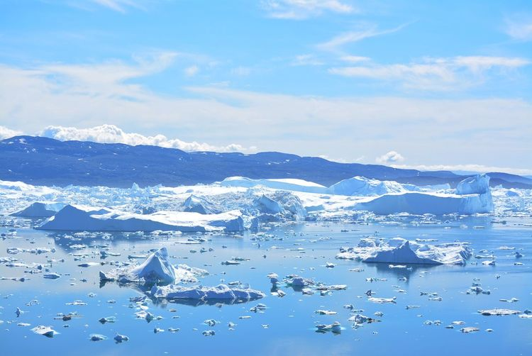 Ilulissat, Greenland, July | UNESCO world heritage site | impressions of Jakobshavn | Disko Bay Kangia Icefjord | huge icebergs in the blue sea on a sunny day | climate change - global warming Beauty In Nature Nature Outdoors Icebergs Iceberg Greenland Climate Change Global Warming UNESCO World Heritage Site Arctic Melting Glacier Natural Beauty Cold Temperature Day Summer Tranquility Nordic Scenery Tranquil Scene Scenics - Nature No People Favorite Places Travel Destinations Travel Photography Wanderlust