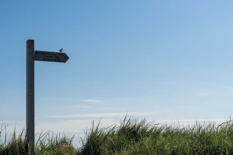 The Cleveland Way sign. Redcar. Sky Plant Grass Nature Sign No People Land Day Guidance Field Communication Copy Space Tranquility Text Pole Outdoors Information Beauty In Nature Low Angle View Vertebrate Bird Cleveland Way Wooden Post Wooden Sign Sign Post