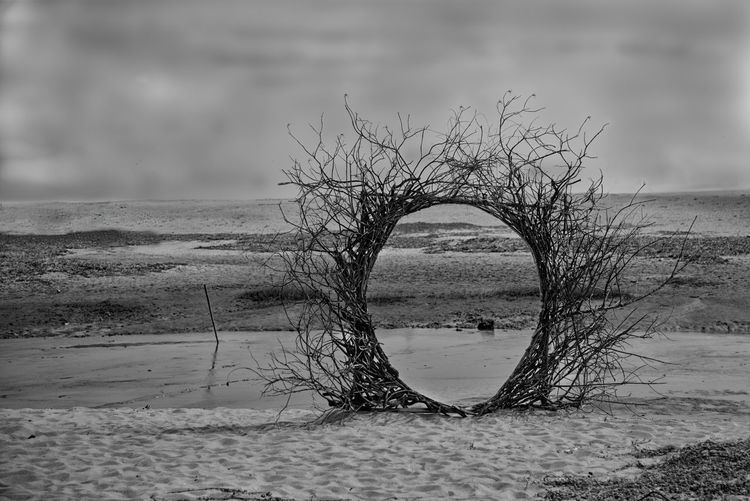 Portal to
