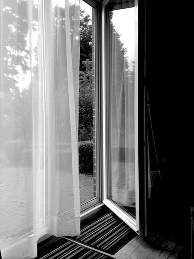 Blackandwhite Black And White Black & White Black&white Blackandwhite Photography Iphone5C Window Windows Viewoutofmywindow ViewOutside