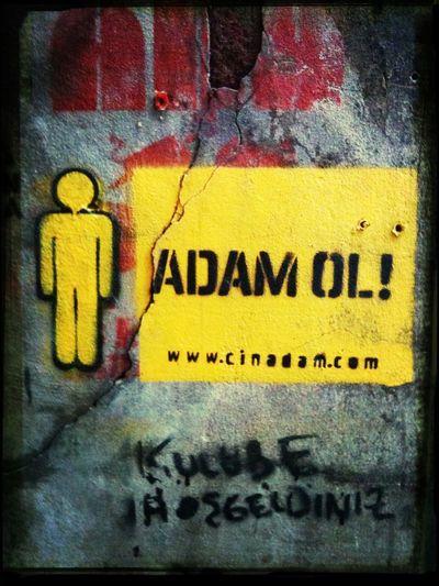 Adam Ol!