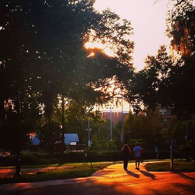 New college, new pictures, and the same old subject... just a new perspective. 🌇 Itsabeautifulevening Sunset Shadows