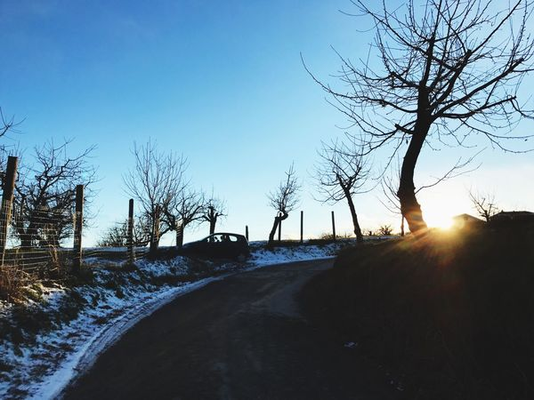 Nature Winter Cold Temperature Bare Tree Sunlight Clear Sky No People Day Flair Road Countryside Country Road Sun Sunset_collection Sunset Silhouettes