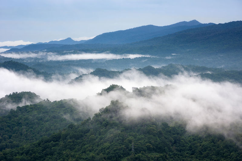 Beautiful mist over green forest on mountain, aerial view sunrise over the mountain range thailand,