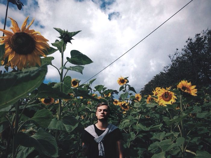 Man Standing In Sunflower Field Against Cloudy Sky