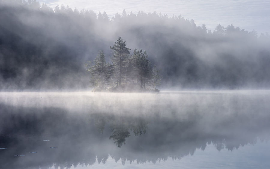 Morning sun over a hazy forest lake. Freshness Norway Oslo Autimn Forest Haze Environment Outdoors Non-urban Scene Idyllic Day Nature No People Reflection Lake Beauty In Nature Scenics - Nature Tranquil Scene Tranquility Water Fog EyeEmNewHere Landscape