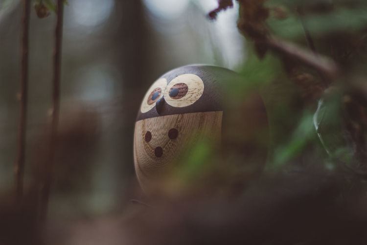 Forest Wood Wooden Wood - Material Toy Toys Wooden Toys Moss Tree Owl Close-up Selective Focus No People Day Plant Focus On Foreground Metal Nature Outdoors Geometric Shape Circle Old Protection Shape Still Life Art And Craft Number