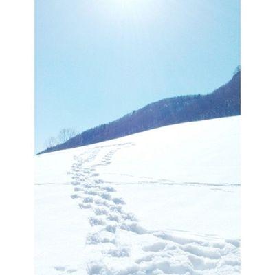 Snowshoeing.❄