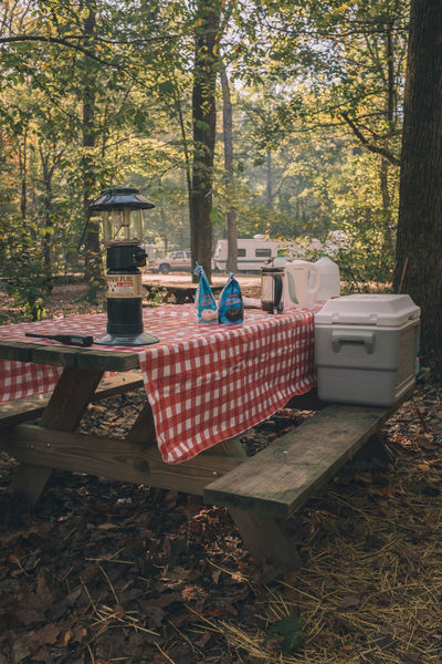 Camping Checkered Light Campinglife Day Forest Nature Outdoors Picnic Table Table Trailer Tree