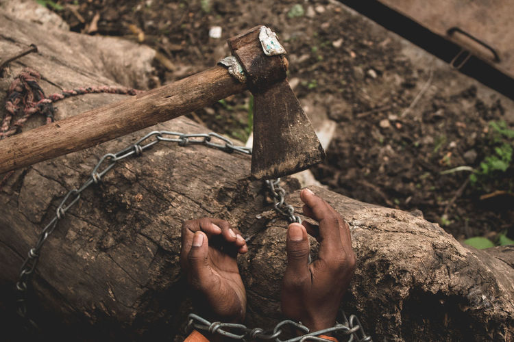 Day Equipment Finger Focus On Foreground Hand Hand Tool Holding Human Body Part Human Hand Men Nature Occupation One Person Outdoors Real People Tool Tree Wood - Material Work Tool Working