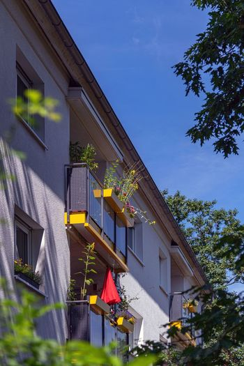 Architecture Built Structure Building Exterior Building Sky Plant Tree Nature House Residential District Low Angle View Blue Day No People Window Outdoors Sunlight Flag Growth Hanging Balkony View Wohnhaus