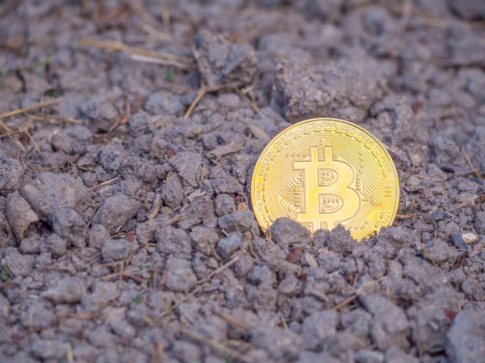 Golden Bitcoin on a soil. Creativity Currency Bitcoin Blockchain Business Close-up Coin Communication Cryptocurrency Currency Digital Currency Economy Exchange Finance Finance And Economy Focus On Foreground Gold Colored Land No People Number Outdoors Savings Single Object Soil