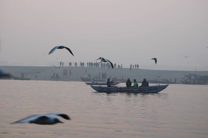 Early morning on the Ganges Water Vertebrate Animal Bird Animal Themes Sky Flying Nature Scenics - Nature Beauty In Nature