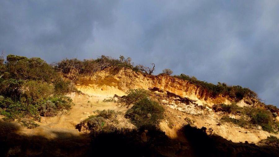 No Filter Golden Hour Sunny Day Landscape Australia