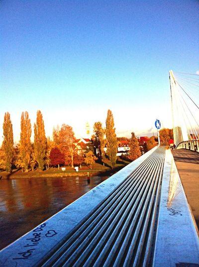 Love Landscape Bridge Enjoying The View