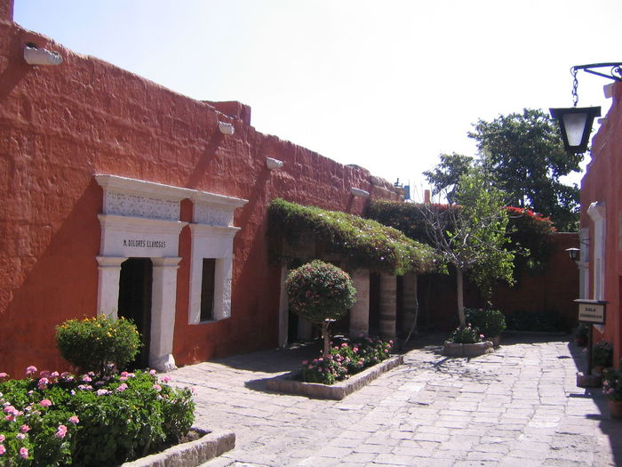 Architecture Arequipa Arequipa - Peru Building Exterior Day Growth Monastary Monasterio De Santa Catalina Nature No People Ornamental Garden Outdoors Tree
