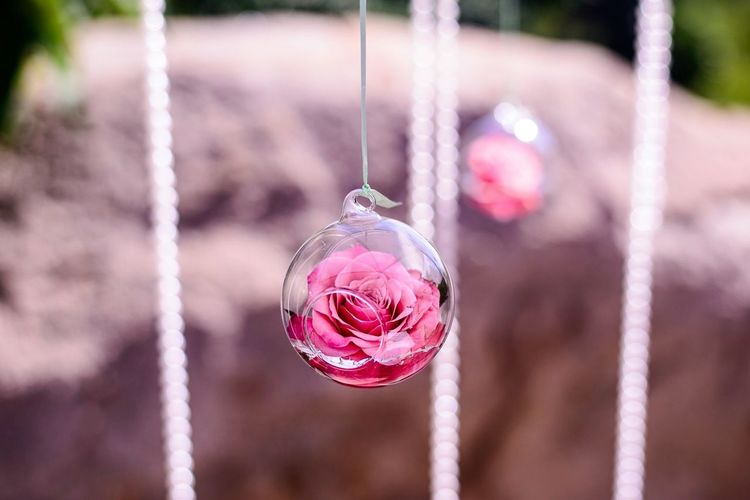 Close-Up Of Pink Rose In Spherical Glass Decoration