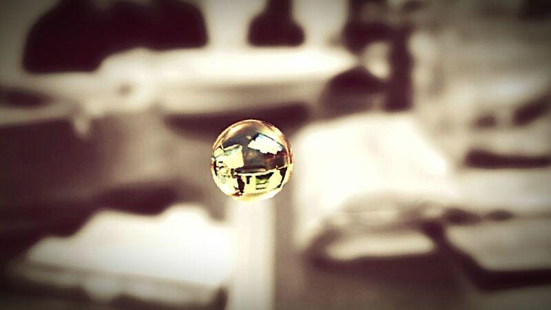 Makro Makro_collection Makrografie Makro Photography Focus Taking Photos