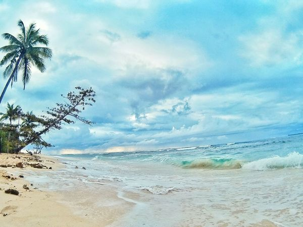 Waves Beach Sea Sand Cloud - Sky Sky Nature Beauty In Nature Water Scenics Tranquility Tranquil Scene Outdoors Horizon Over Water Blue Tree Summer Day Travel Destinations Vacations No People Philippines Tourism Adventure Nature Lost In The Landscape