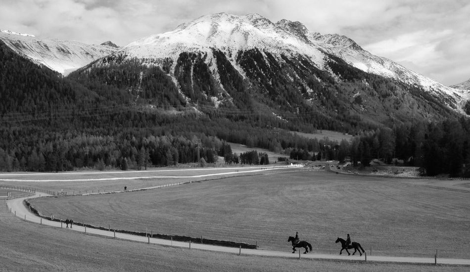 Engadin Switzerland Celerina Sangian horses Sky Fujifilm Fujifilm_xseries Fujifilm X-E2 Landscape Horses Bnw Blackandwhite Mountain Beauty In Nature Itsabeautifulworld
