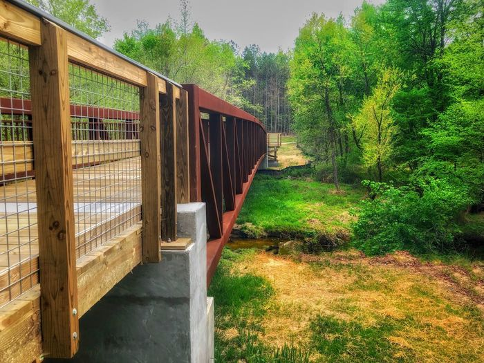 Park bridge in the woods Plant Tree Architecture Green Color Nature Built Structure Barrier Growth Safety Sunlight Protection No People Day Wood - Material Boundary Security Fence Grass Outdoors Gate