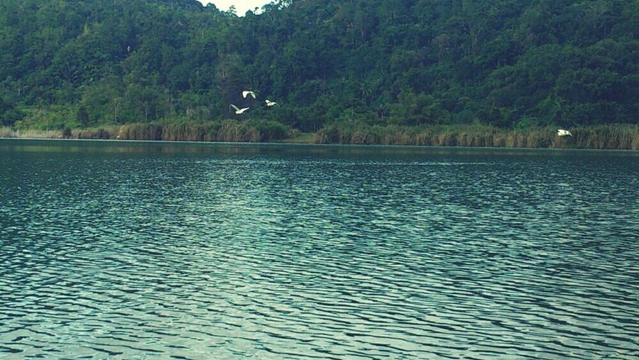 Landscape Sony Manado XPERIA Liburan Danau Linow