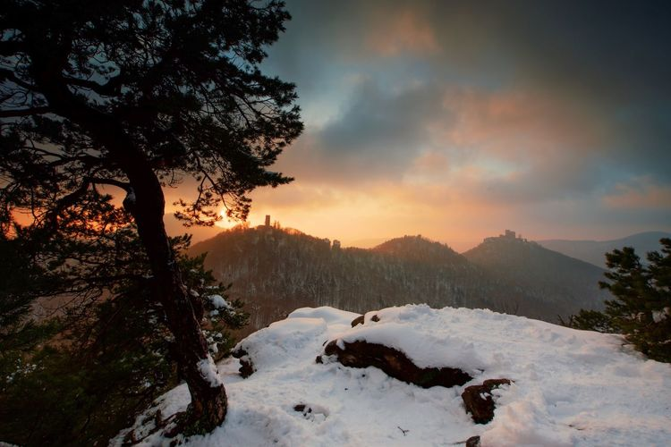 Sunset over the Palatinate Forest. EyeEm Nature Lover EyeEm Best Shots The Week on EyeEm Snow Winter Cold Temperature Mountain Cloud - Sky Sky Nature Sunset Beauty In Nature Landscape Scenics Outdoors Mountain Range Tree No People Tranquil Scene