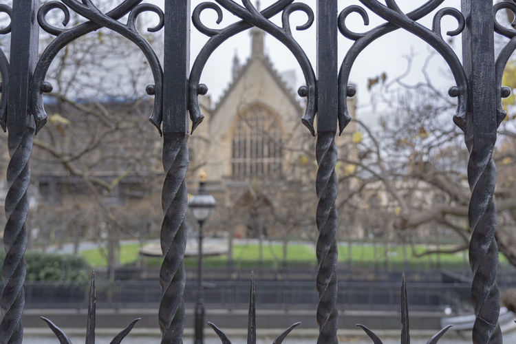Architecture Fence Focus On Foreground Tree Boundary Safety Metal Security Barrier No People Protection Building Exterior Gate Arch Iron - Metal Wrought Iron Garden Church Church Yard Keep Out Black Iron Iron Gate Iron Fence London England