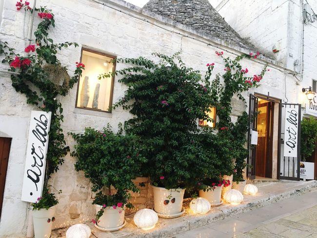 Alberobello 💘 Imagine Picoftheday Day Nice Phone Photo IPhone Summer Flower Handmade Love Trulli Houses Week Puglia Bari